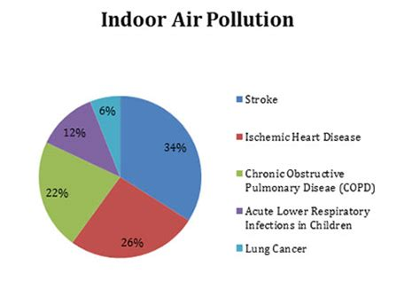 Air pollution india essay